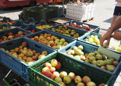 Ein Marktstand mit Äpfeln in Frankfurt (Oder)